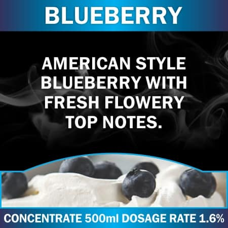 CONCENTRATE 500ML BLUEBERRY
