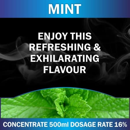 CONCENTRATE 500ML MINT